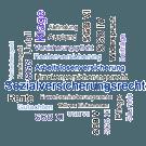 Sozialversicherungsrecht in Stichworten
